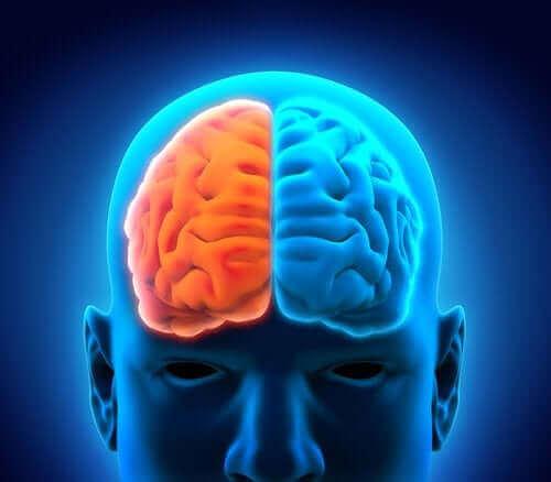 masennus vaikuttaa aivoihin