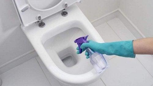 Valkoviinietikka on yksi niistä ekologisista puhdistusaineista, jotka auttavat poistamaan WC-pöntön pinttymät tehokkaasti
