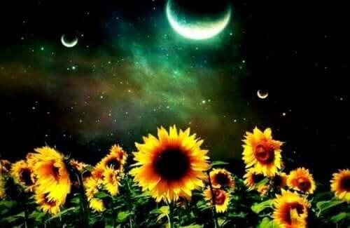 Kuu paistaa kesäyönä.