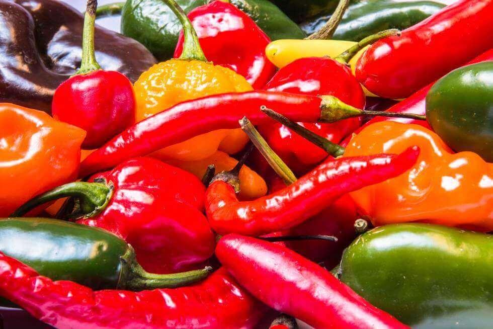 Yliaktiivinen virtsarakko on tila, joka voi pahentua mausteisia ruokia syömällä