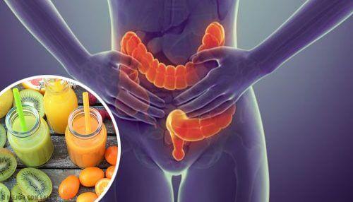 Suolta puhdistavan ruokavalion etuna on se, että se auttaa ehkäisemään sairauksia ja tehostaa suolen omaa toimintaa
