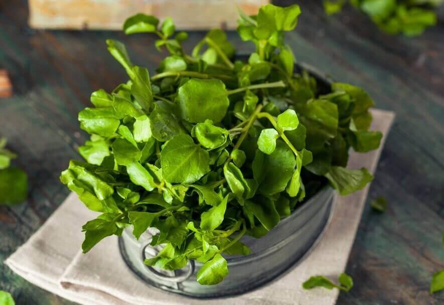 Kalsiumpitoiset kasvikset: vesikrassi.