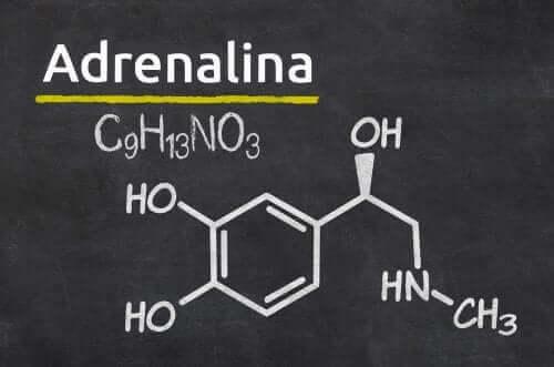 Epinefriini eli adrenaliini on arvokas lääke sydämenpysähdyksissä