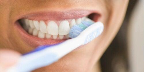 Plakki voidaan poistaa asianmukaisella tavalla harjaamalla hampaita ja käyttämällä hammaslankaa päivittäin