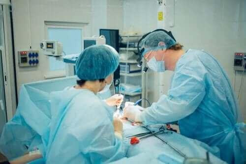 Vatsan märkäpesäkkeet voidaan tyhjentää leikkauksella