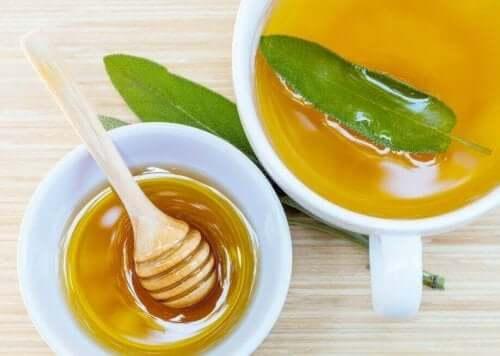 Haavojen ja naarmujen hoito onnistuu salviasta ja hunajasta valmistetulla seoksella