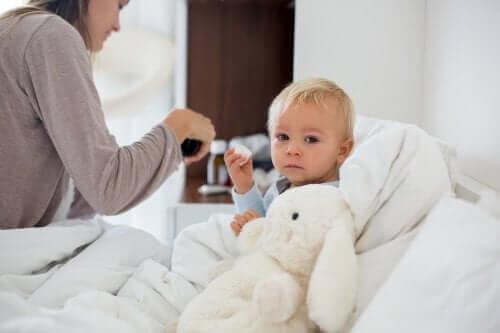 Hypotermia lapsella: kuinka toimia?