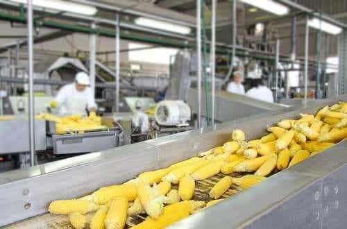 Teollisten prosessien vaikutus elintarvikkeiden ravintoarvoon