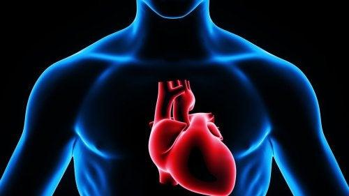 Sydämensisäistä lääkitystä annettaessa lääke siirtyy suoraan sydämeen, jolloin lääkkeen vaikutus voidaan nähdä elimistössä välittömästi