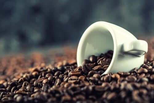 Kofeiini toimii luonnollisena stimulanttina, joka auttaa sekä parantamaan että ylläpitämään aivojen terveyttä ja suorituskykyä