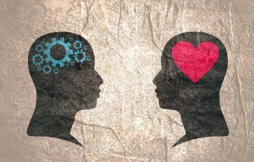 Sapioseksuaalisuus, älykkäiden ihmisten vetovoima