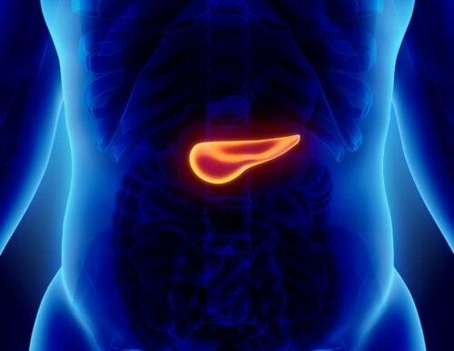 Oireiden voimakkuudesta huolimatta akuutti haimatulehdus on vakava sairaus, joka tulee hoitaa sairaalassa