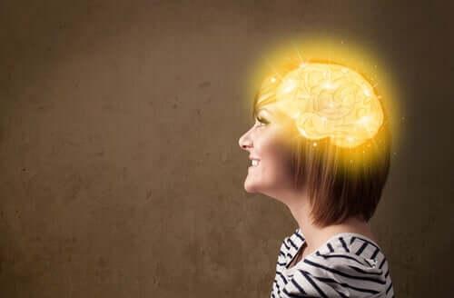 Tutkimusten mukaan vähähiilihydraattisilla dieeteillä on kielteinen vaikutus muistiin ja oppimiseen, mutta vain lyhyellä aikajaksolla