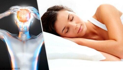 Tieto siitä, nukummeko tarpeeksi, riippuu pitkälti niistä merkeistä, joita elimistö meille osoittaa, ettemme saa tarpeeksi lepoa