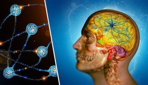 Aivojen etäpesäkkeet ovat yleinen syöpämuoto.