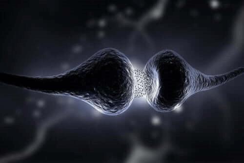 Sertraliini estää serotoniinin takaisinottoa
