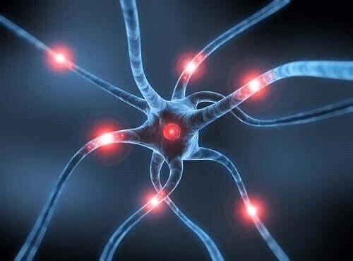 Rasagiliinin käyttö Parkinsonin taudin hoidossa perustuu sen monoamiinioksidaasi B:tä estävään vaikutukseen
