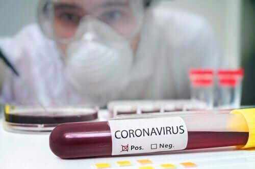 Maailman terveysjärjestö WHO julisti koronaviruksen pandemiaksi eli maailmanlaajuiseksi epidemiaksi 11.maaliskuuta 2020