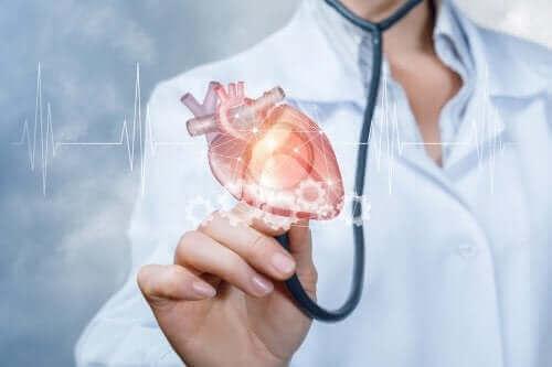 Sydän ja lääkäri.