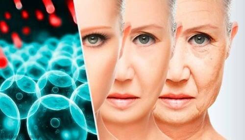 Stanfordin yliopistossa tehdyn tutkimuksen mukaan ihmisen elämässä on kolme merkittävää ikääntymiseen liittyvää hetkeä