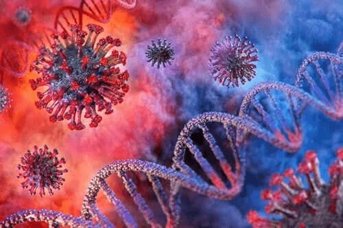 Kuinka pestä hedelmät ja vihannekset koronaviruspandemian aikana