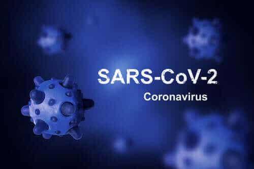 Mistä koronavirus on peräisin ja miksi emme ole onnistuneet vielä poistamaan sitä?