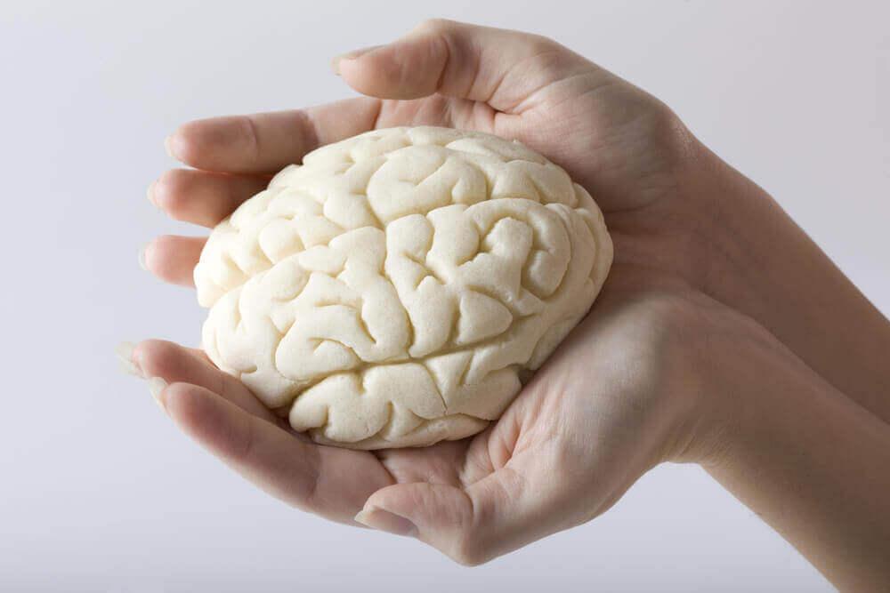 Mikä vaikutus COVID-19 -tartunnalla on aivoihin?