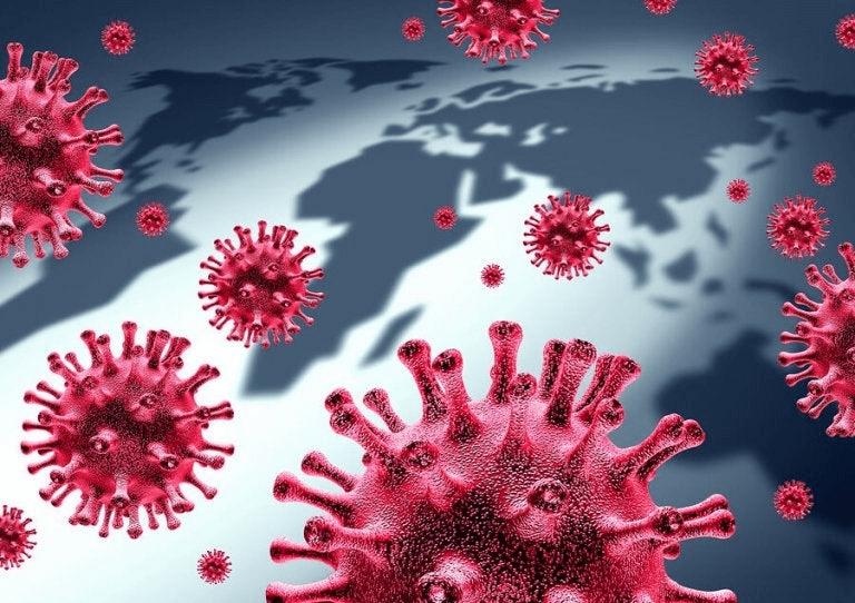 Jokainen koronavirustyyppi leviää helpoiten eri maantieteellisillä alueilla