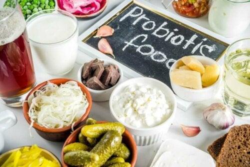 Mitä eroa on prebiooteilla ja probiooteilla?