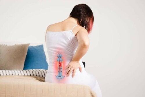 Koska radikulopatia vaikuttaa tietyssä hermojuuressa, sen oireet esiintyvät useimmissa tapauksissa juuri siinä kehon osassa, jossa sairastunut hermo sijaitsee