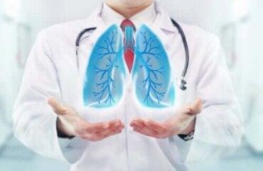 Miten hengitys vaikuttaa aivoihin?