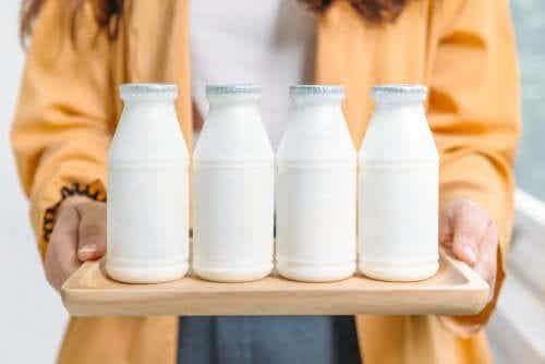 Kummat ovat parempia: täysmaitotuotteet vai vähärasvaiset maitotuotteet?