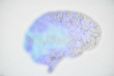 Epilepsia on krooninen, ei tarttuva aivosairaus, joka vaikuttaa kaikenikäisiin ihmisiin