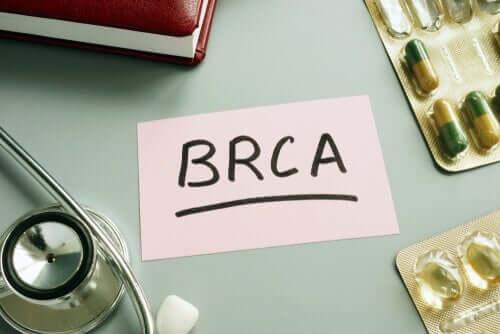 BRCA1-mutaatio kasvattaa munasarjasyövän riskiä jopa 20 - 40 prosentilla