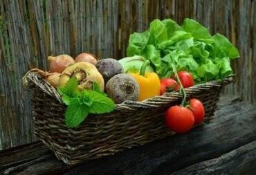 Paras ruokavalio syöpää sairastaville