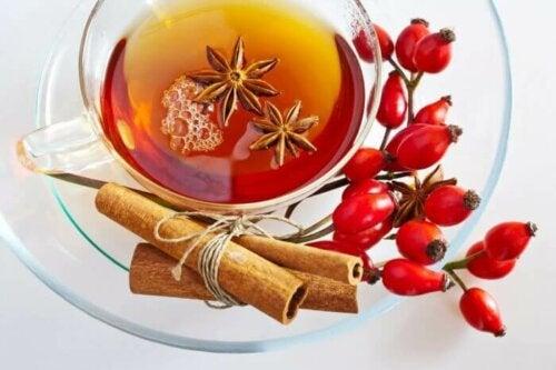 Ruusunmarjateen sisältämät komponentit auttavat edistämään parempaa ruoansulatusta sekä parantamaan ravintoaineiden imeytymistä
