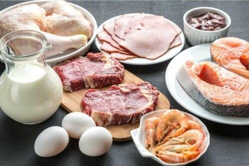 Kuinka proteiinit toimivat kehossa?