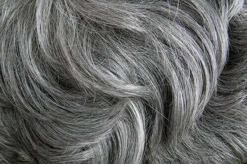 Tutkimus vahvistaa, että stressi aiheuttaa harmaita hiuksia