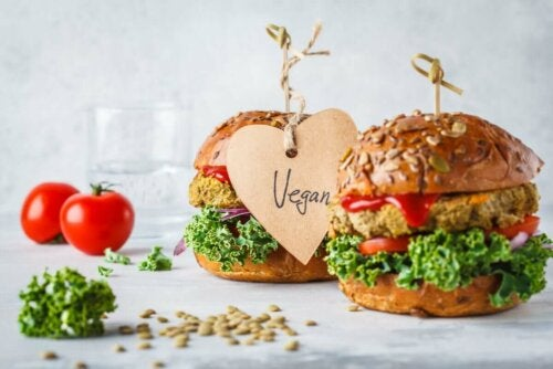 Myös kasviperäisistä tuotteista löytyy useita elintarvikkeita, jotka sisältävät runsaasti proteiineja