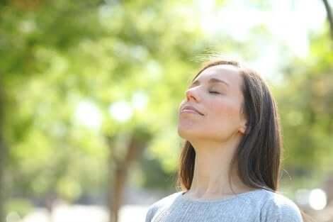 Kiireisessä elämässä tulisi yrittää löytää hiljaisia lepohetkiä