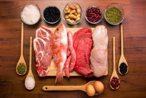 Kuinka proteiinit toimivat ja mikä niiden tehtävä on kehossa?