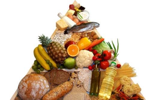 Ruokapyramidin eri osat, jotka muodostavat myös ateriamme, vaikuttavat eri tavoin elimistössä