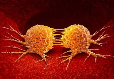 Syöpä alkaa solusta