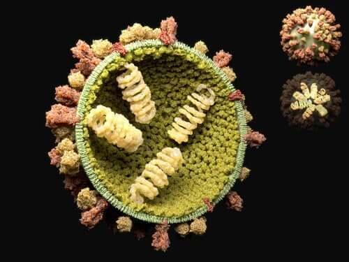 Virusten lisääntymiskierto