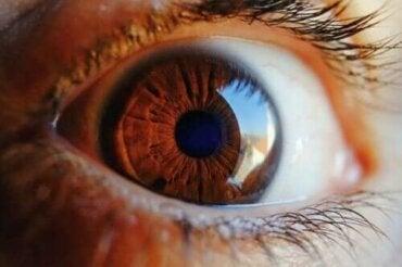 Kuinka silmä puhdistaa itsensä?