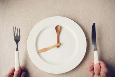 Ruoansulatusjärjestelmä on valmiina vastaanottamaan ruokaa tiettyinä aikoina