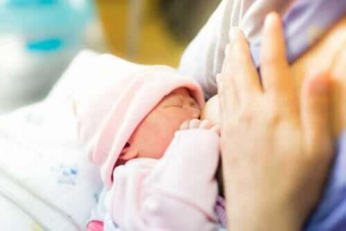 Rintamaidon antamista ei tarvitse lopettaa töiden tai opintojen takia, jos imettävät äidit oppivat kuinka säilöä rintamaitoa
