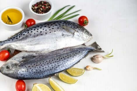 Atlantin ruokavalio on yksi neljästä ruokavaliosta, joita tutkimukset tukevat