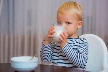 Mikä on paras maito yli yksivuotiaille lapsille?