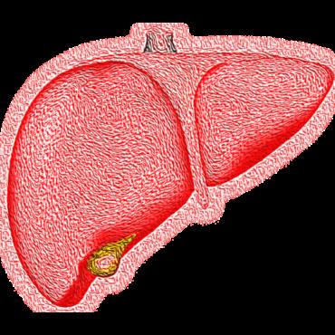 Maailman hepatiittipäivä: sairaus on estettävissä